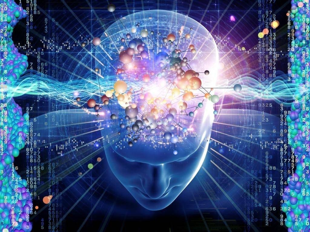 A neurociência mostra como funciona o cérebro quando realiza o processo de compra