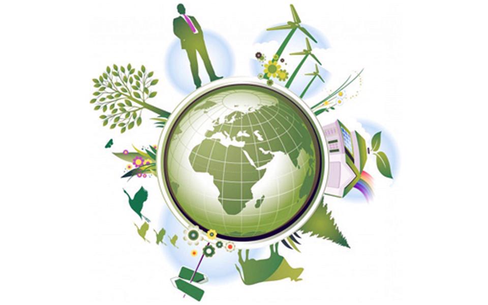 Empreendedorismo ambiental é foco de desafio do WWF e Impact Huber