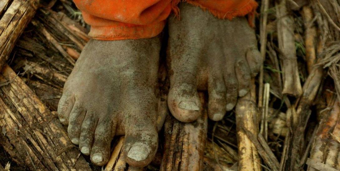 Trabalho Escravo no Brasil Foto: Marco Antônio Teixeira / Agência O Globo